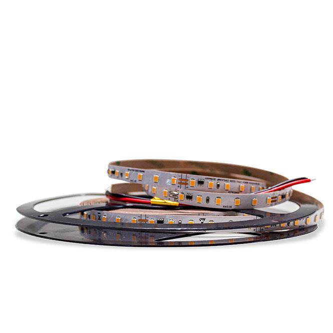 Nahaufnahme des Constaled WW LED-Stripes 31214